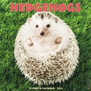 """2018 Willow Creek Press 12"""" x 12"""" Hedgehogs Wall Calendar (45153)"""