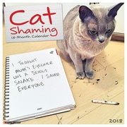 "2018 Willow Creek Press 12"" x 12"" Cat Shaming Wall Calendar (44408)"