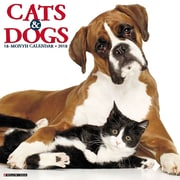 "2018 Willow Creek Press 12"" x 12"" Cats & Dogs Wall Calendar (44439)"