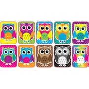Color Owls Mini Whiteboard Erasers Non Magnetic, 10/pk (ASH78007) by