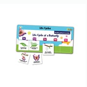 FlipChex™ Science, Life Cycles, Gr. PreK-2 (PC-4302)