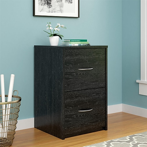 Awe Inspiring Ameriwood Home Core 2 Drawer Vertical File Cabinet Letter File Size Black Oak 9524026Pcom Interior Design Ideas Ghosoteloinfo