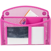eXcessory Magnetic Mirror Organizer-Pink