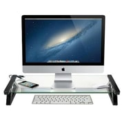 DG Sports Universal Monitor Laptop Multimedia Stand with Built in 3 Port USB 2.0, Clear(CSPG019)