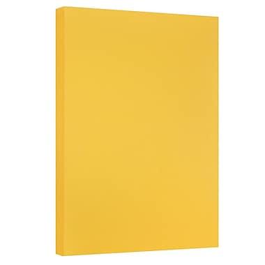 JAM Paper - Papier cartonné bristol de format tabloïde, fini vélin, 11 x 17 po, 67 lb, verge d'or, 50 feuilles (16932834)