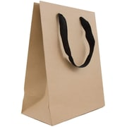 JAM Paper® Heavy Duty Kraft Gift Bags, Medium, 8 x 10 x 4, Kraft Matte Recycled, 3/Pk (672HDKRA)