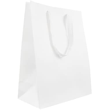 JAM Paper® Heavy Duty Kraft Gift Bags, Large, 10 x 13 x 5, White Matte Recycled, 10/Pack