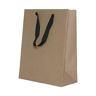 JAM Paper® Heavy Duty Kraft Gift Bags, Large, 10 x 13 x 5, Kraft Matte Recycled, 3/Pack