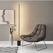 """Adesso® Felix 65""""H Antique Brass LED Wall Washer Floor Lamp with Tube Shade (3607-21)"""