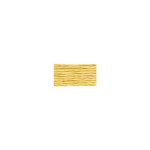 DMC Six Strand Embroidery Floss, Cotton, 8.7 Yards, Light Old Gold (117-676)