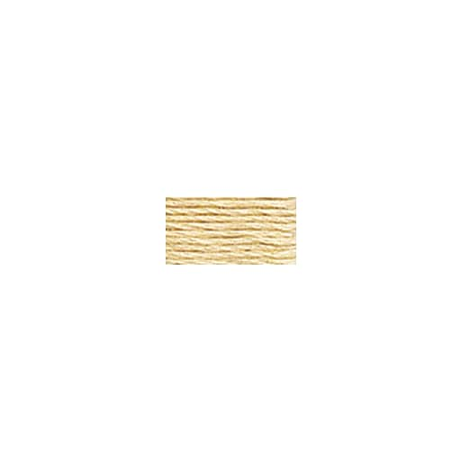 DMC Six Strand Embroidery Floss, Cotton, 8.7 Yards, Ultra Very Light Tan (117-739)