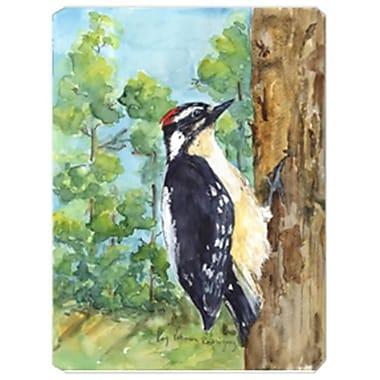 Carolines Treasures 9.5 x 8 in. Bird - Downy Woodpecker Mouse Pad, Hot Pad Or Trivet(CRLT19975)