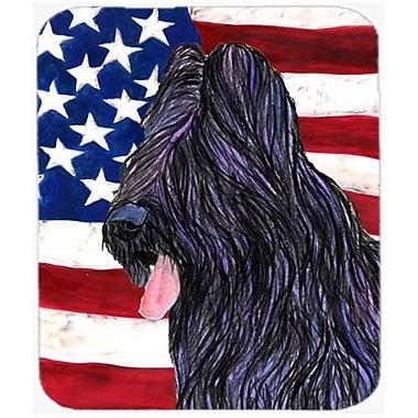 Carolines Treasures Usa American Flag With Briard Mouse Pad, Hot Pad Or Trivet(CRLT21431)