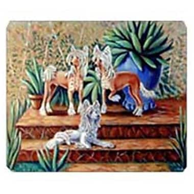 Carolines Treasures 8 x 9.5 in. Chinese Crested Mouse Pad, Hot Pad or Trivet(CRLT20303)