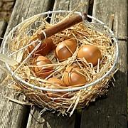 Yellow Door® Play Eggs, 6 Per Pack, Grades PreK+ (YUS1091)