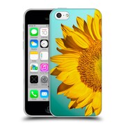 Official Mark Ashkenazi Florals Sunflowers Soft Gel Case For Apple Iphone 5C