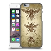 Official Brigid Ashwood Winged Things Specimens 2 Hard Back Case For Apple Iphone 6 / 6S
