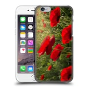 Official Celebrate Life Gallery Florals Waiting For The Morning Hard Back Case For Apple Iphone 6 / 6S