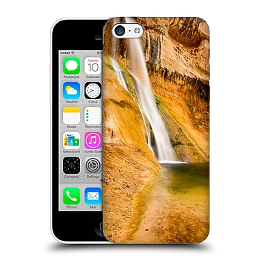 Official Michael Blanchette Southwest Desert Oasis Hard Back Case For Apple Iphone 5C