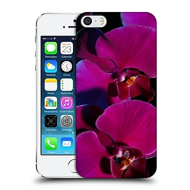 Official Elena Kulikova Orchids Purple Hard Back Case For Apple Iphone 5 / 5S / Se