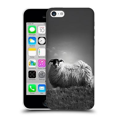 Official Dorit Fuhg Travel Stories Le Fluff Hard Back Case For Apple Iphone 5C