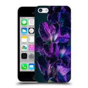 Official Elena Kulikova Orchids Purple Gladiola Hard Back Case For Apple Iphone 5C
