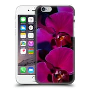 Official Elena Kulikova Orchids Purple Hard Back Case For Apple Iphone 6 / 6S