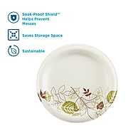 "Dixie Pathways Medium-Weight Paper Plate, 8.5"", 300/Box (UX9PATHPB)"