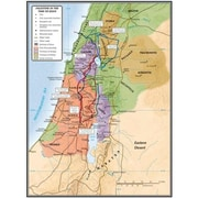 B & H Publishing Group Map-Palestine In The Time Of Jesus - 19.25 x 26 in. (ANCRD57621)