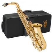 Jean Paul Student Alto Saxophone (VLCD064)