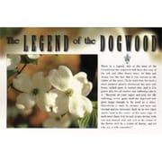 Jenkins Enterprises Legend of Dogwood Postcard - Case of 500 (DLR332536)