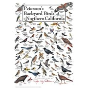 Steven M. Lewers Earth Sky Water Petersons Backyard Birds of Northern California Poster (GC23758)