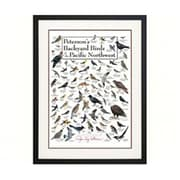 Steven M. Lewers Earth Sky Water Petersons Backyard Birds of Pacific NW Poster (GC23549)