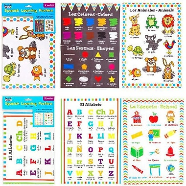 FLOMO Double Sided Spanish Learning Posters - Case of 48 (DLR333462)