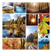 Melissa And Doug Autumn Snapshots Cardboard Jigsaw Puzzle, 1000 Pieces (MLSSAND1518)