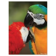 Melissa And Doug Parrot Pals Cardboard Jigsaw Puzzle, 300 Pieces (MLSSAND1397)