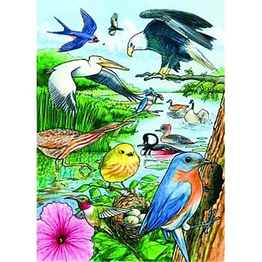 Outset Media Games North American Birds Tray Puzzle 35 pcs (GC11020)