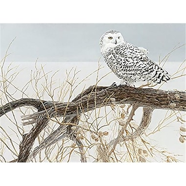 Outset Media Games Fallen Willow Snowy Owl- 500 Piece Puzzle (GC23482)