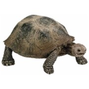 Schleich North America Giant Turtle -Green (TRVAL97228)