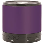 Hottips Portable Bluetooth Speaker Purple - Case of 48 (DLR330142)