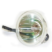 Ereplacements Generic TV Bulb Only (ERPLC155)