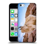 Official Darren White Wildlife Billy Goat Scruff Hard Back Case For Apple Iphone 5C