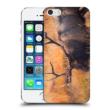 Official Darren White Wildlife Shooting The Bull Hard Back Case For Apple Iphone 5 / 5S / Se