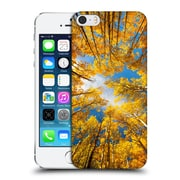 Official Darren White Fall Colours Aspens Alive Hard Back Case For Apple Iphone 5 / 5S / Se