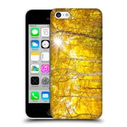 Official Darren White Fall Colours Tree Fire Hard Back Case For Apple Iphone 5C