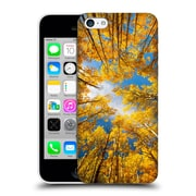Official Darren White Fall Colours Aspens Alive Hard Back Case For Apple Iphone 5C