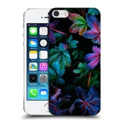 Official Darren White Wild Flower Plants And Blooms Frosty Fall Hard Back Case For Apple Iphone 5 / 5S / Se