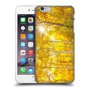 Official Darren White Fall Colours Tree Fire Hard Back Case For Apple Iphone 6 Plus / 6S Plus