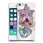 Official Rachel Caldwell Anatomy Rib Cage Hard Back Case For Apple Iphone 5 / 5S / Se