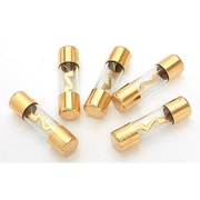 XSCORP 100 Amp Agu Fuses Gold Ends - 5-Pack(WHSL846)